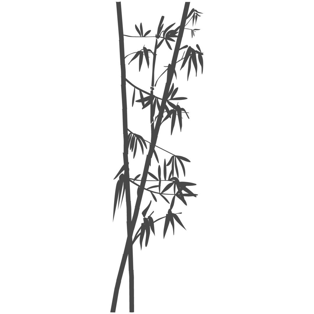 Wandtattoo Bambus Zweige Aste Baum Blatter Asiatisch